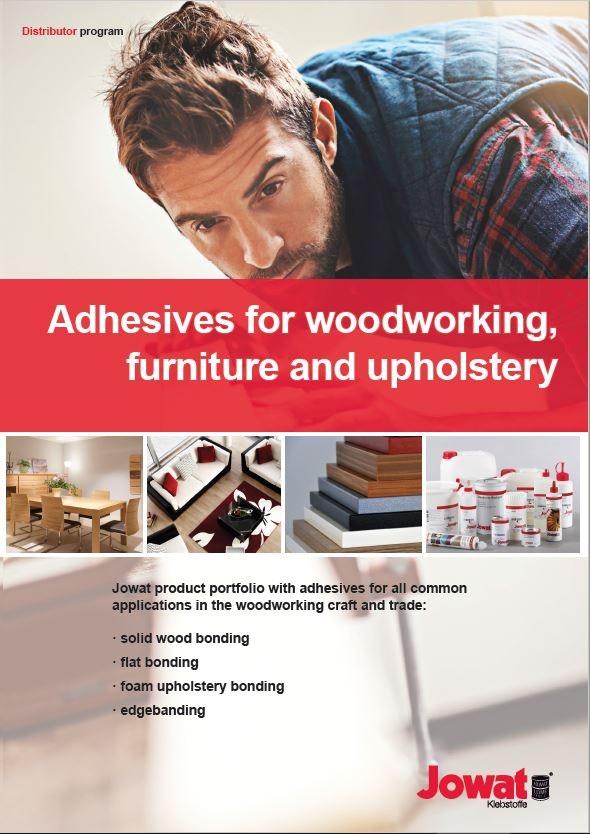 Adhesivos para madera, muebles y tapicería (Inglés)