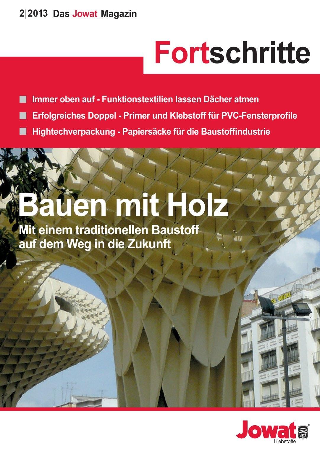 Fortschritte, Ausgabe 2/2013